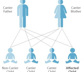 Inherited Genetic Diseases